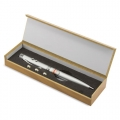 SILVER CONFERENCE LASER PEN