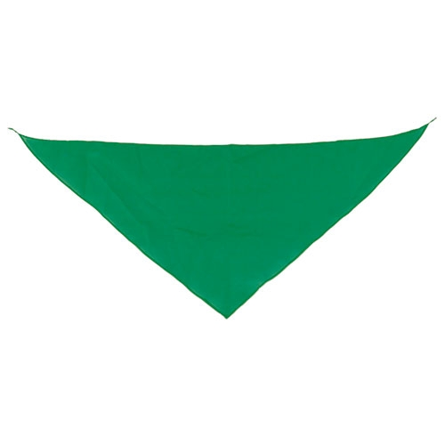 TRIANGULAR PENNANT