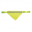 HIGH VISIBILITY COLLAR CAN