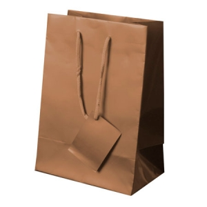 PLASTIFIED GIFT BAG