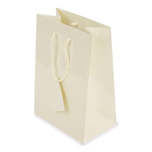 PLASTIFIED GIFT BAG