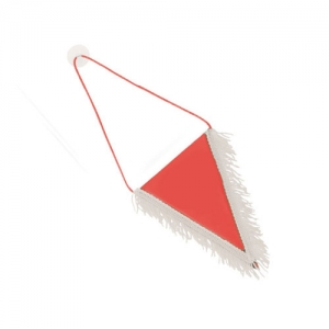 SMALL TRIANGULAR PENNANT